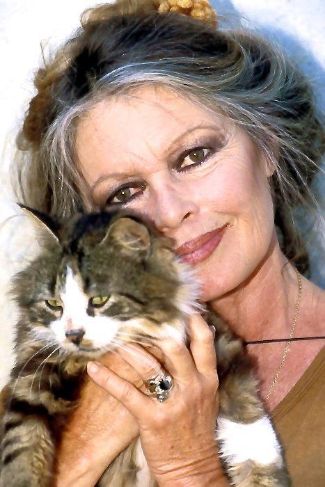 Brigitte Bardot dans les années 80 où elle fit connaitre son combat contre la maltraitance animale.