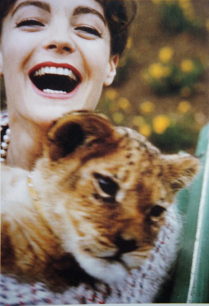 """Lionceau et poilade. Romy, années 60. Elle vient de dire """"merde"""" à Sissi et à l'Autriche bourgeoise pour vivre comme elle l'entend."""